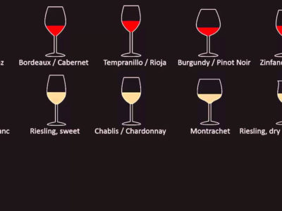 Choosing the Perfect Wine Glass