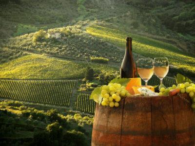 Italian influences on California Wines