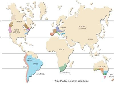 Understanding Your Wine Makes it Taste Better