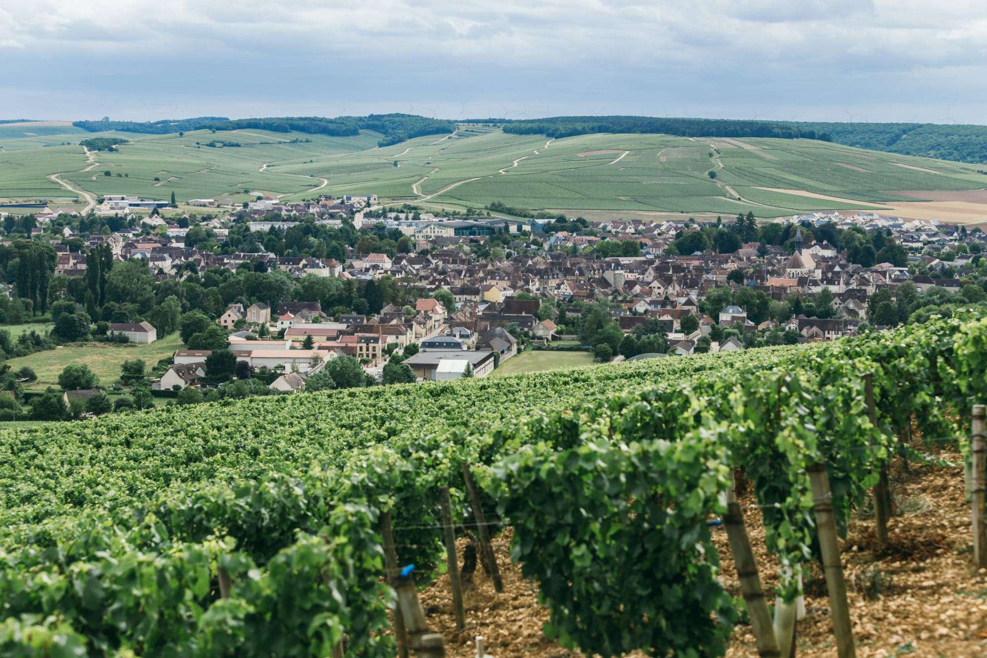 Chablis wine Burgundy French wine regions