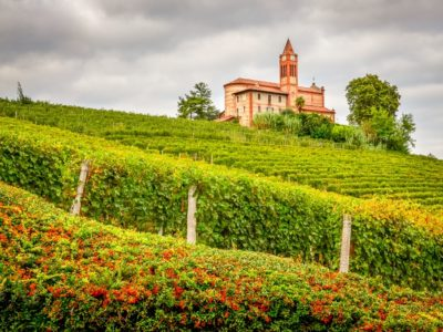 Moscato d'Asti: A Sweet but Serious Guide