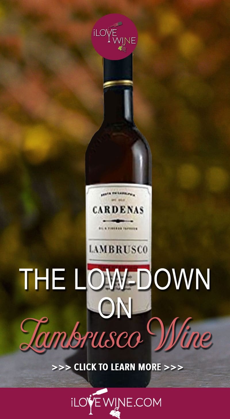 Now is a great time to experience the unique qualities that this northern Italian wine family has to offer. The four most notable, high-quality grapes in the Lambrusco family are Lambrusco di Sorbara, Lambrusco Maestri, Lambrusco Grasparossa and Lambrusco Salamino. Click to learn more about Lambrusco Wine! Love wine | Lambrusco Wine | Sweet Wine | Italian Wine #lovewine #wine #Lambruscowine #ItalianWine #SweetWine