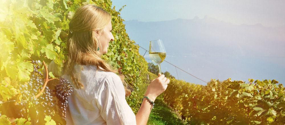Wine Hobbyist