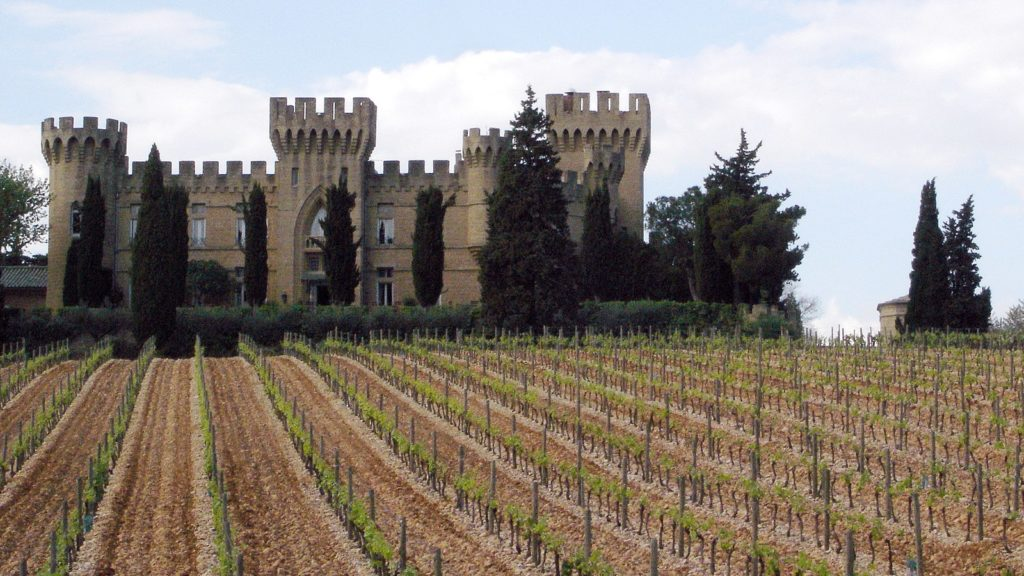 Beautiful castle and vineyard in france