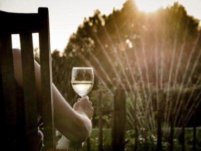 Best White Wines Under $50