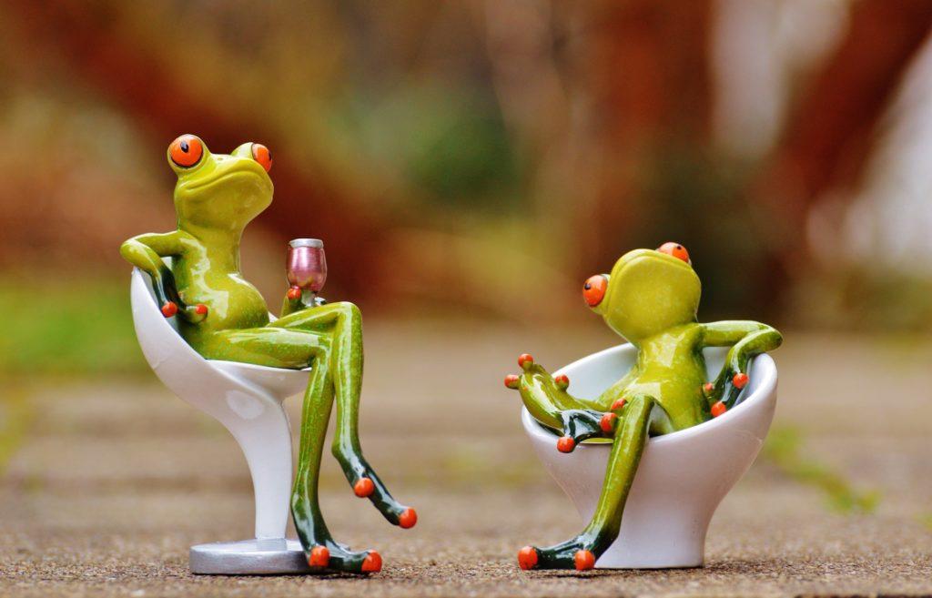 cute frogs drinking wine