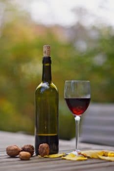 best wine making guides