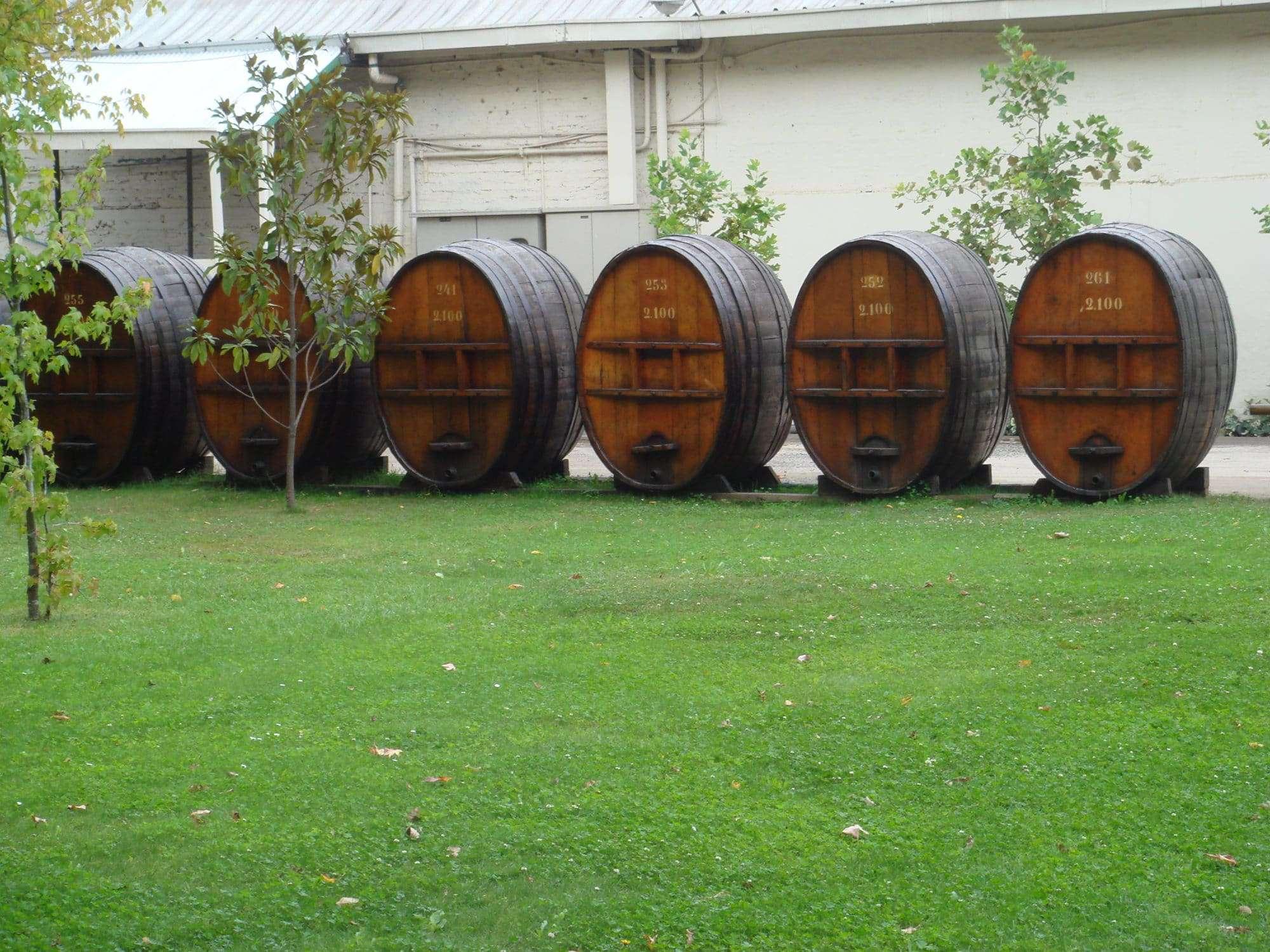 Toro Spanish wine regions
