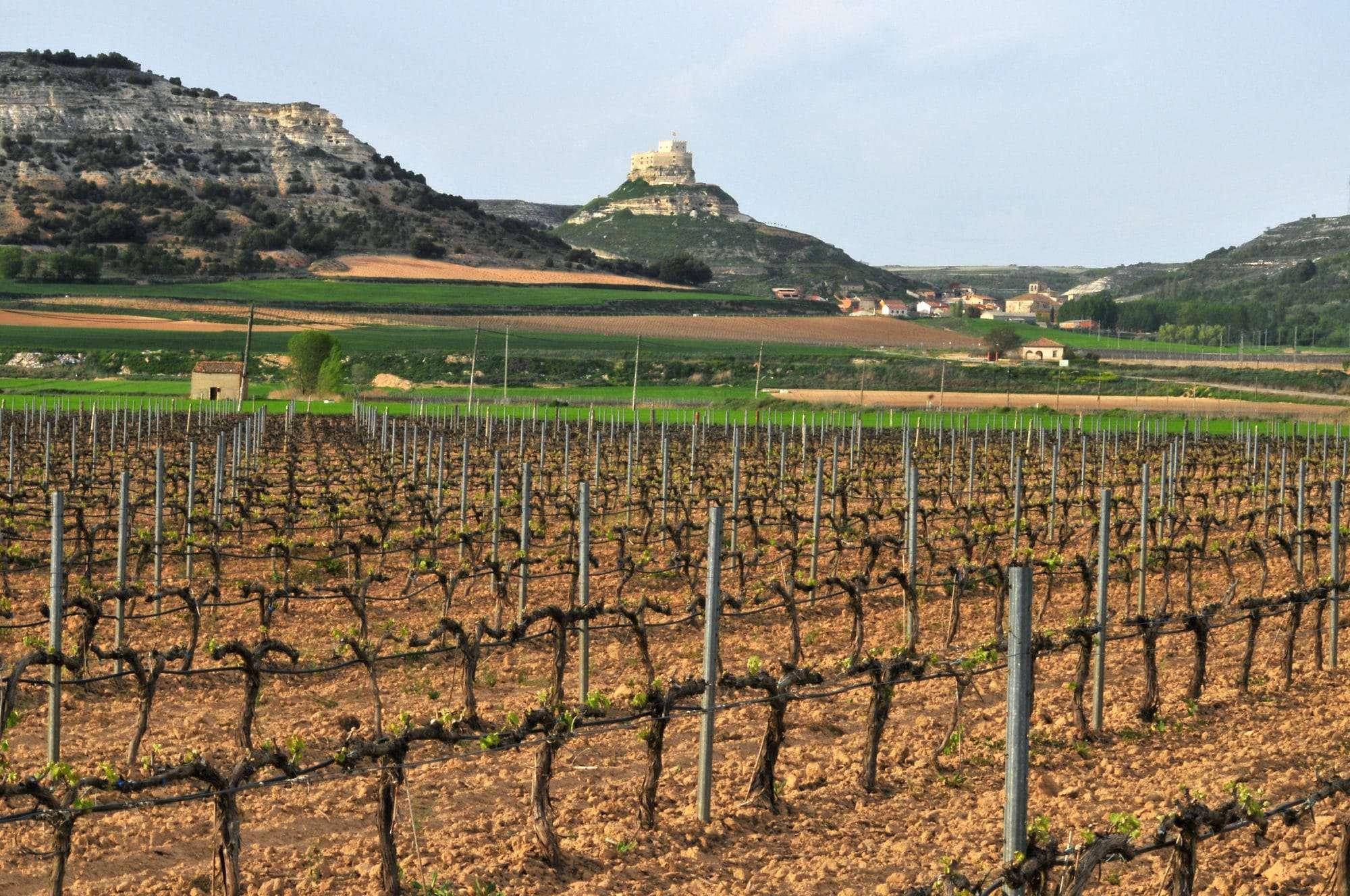 Duero Spanish wine regions