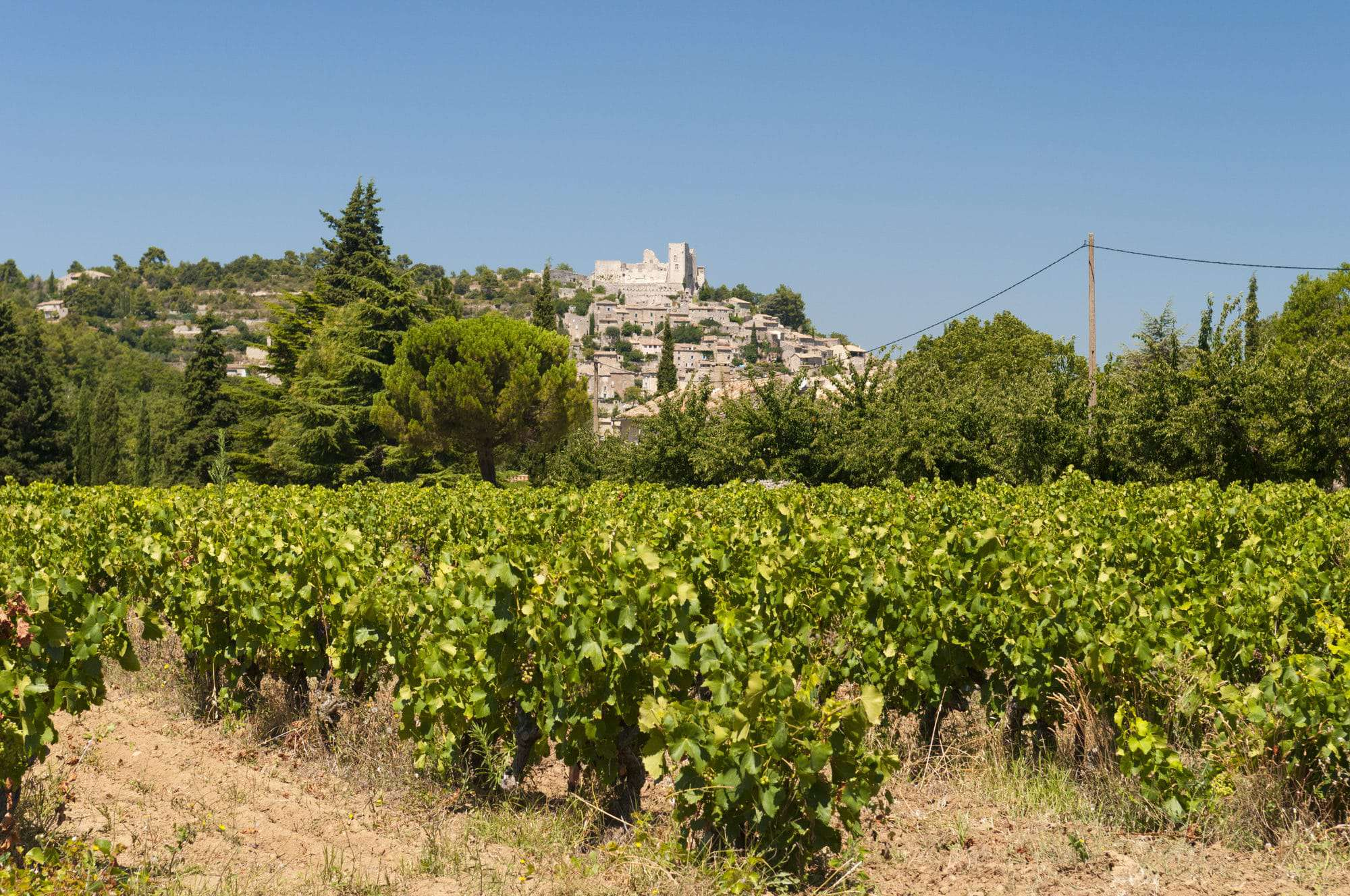 Provence France, French wine regions