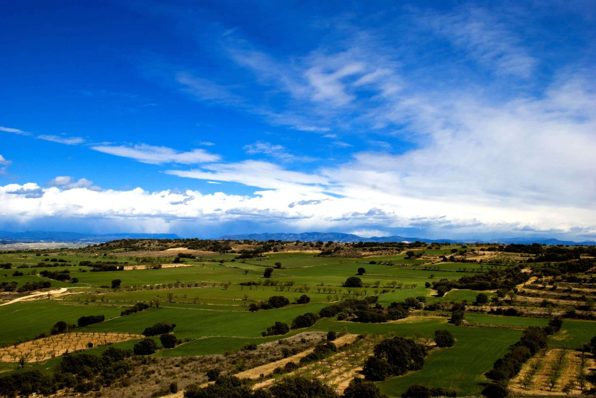 Somontano, Spanish wine regions
