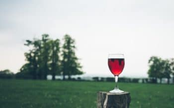 A glass of red wine in a field.