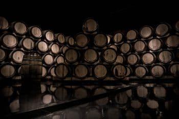 A collection of oak wine barrels in a wine cellar.
