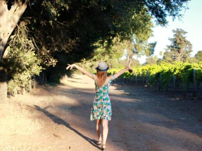 Best Wineries in Sonoma: The Finest of Northern Californian Wine