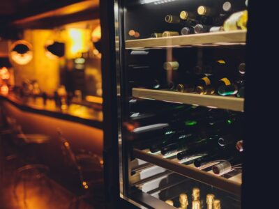 10 Best Built-in Wine Coolers of 2021 (Under Counter Fridge)
